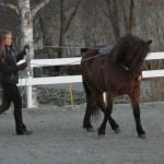 Tonje og Birna lærer seg tømmekjøring